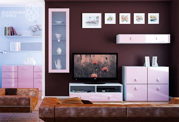 шкафы в дизайне тв зоны фото