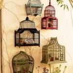 Любимый домик для питомца: птичка-невеличка, экзотика или пушистый комочек