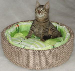 лежанку для кошки 1